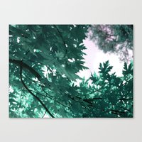 turquoise Canvas Prints featuring turquoise by Françoise Reina