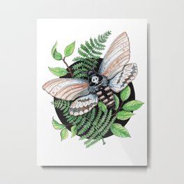 moth in nature Metal Print