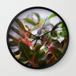 Watermelon Flavored Wall Clock