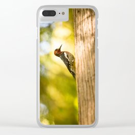 Woodpecker in the Rainforest Clear iPhone Case