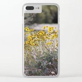 Brittle Bush 2 At .... Wildlife Preserve Clear iPhone Case