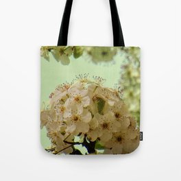 Spring Flowers on mint green background A377 Tote Bag