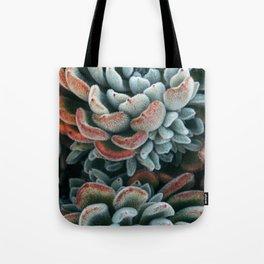 Autumn Succulent #1 Tote Bag