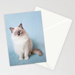 Blue eyed Ragdoll kitty sitting Stationery Cards