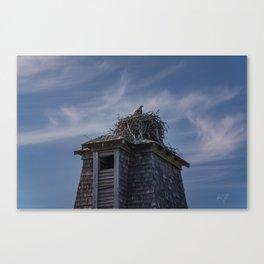 Bat Tower Osprey Nest Canvas Print