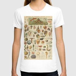 Vintage sealife and seashell illustration T-shirt