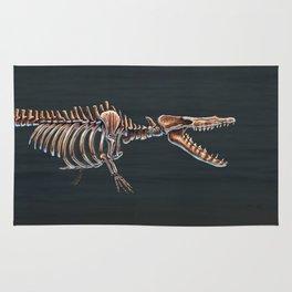 Rodhocetus Kasrani Skeletal Study Rug