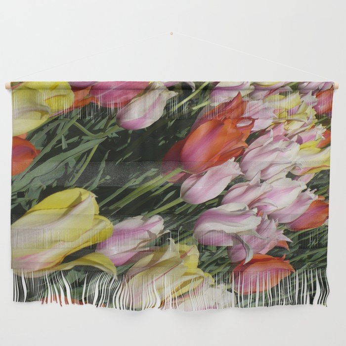 Field Of Rainbow Tulips In Albany Ny Wall Hanging By