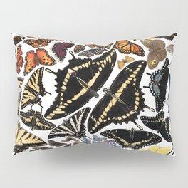 Butterflies of North America Pillow Sham