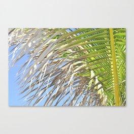 Under the Palm Tree Canvas Print