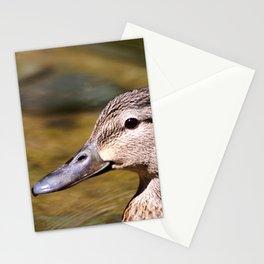 Mallard Portrait Stationery Cards