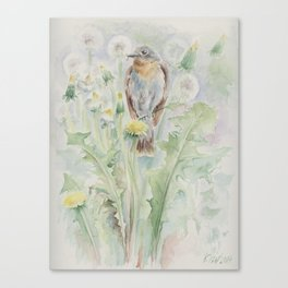Flycatcher Wildlife bird watercolor painting Canvas Print