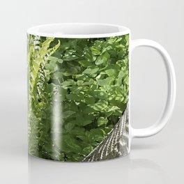 Ferns - leaves and shadows - against birch bark Coffee Mug