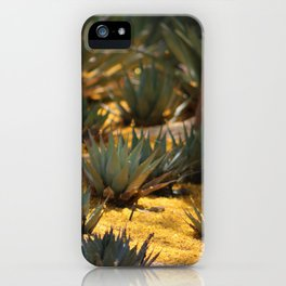 Palo Brea Flowers Covering Agave at Sunnyland iPhone Case