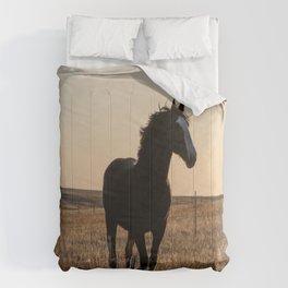 Freya Comforters