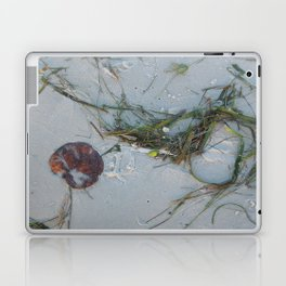 Natural Art Laptop & iPad Skin