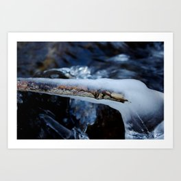 Branch in Ice Art Print