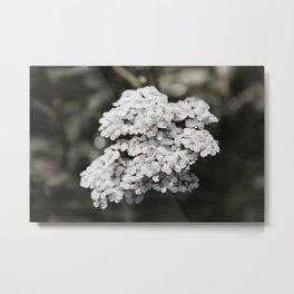 Rainy Day Bloom Metal Print