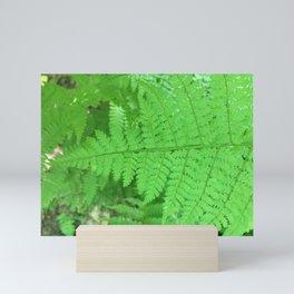 Green Fern Blurr Mini Art Print
