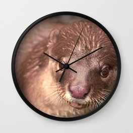 Smooth Coated Otter  Wall Clock