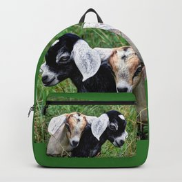 Milky Way and Moonshine Backpack
