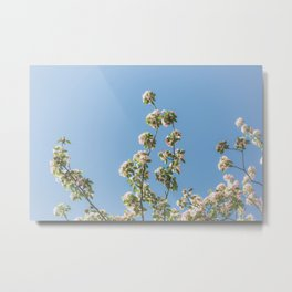 Spring & Daydreams Metal Print