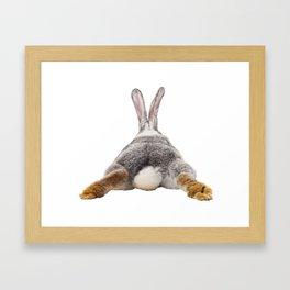 Cute Bunny Rabbit Tail Butt Image Easter Animal Framed Art Print