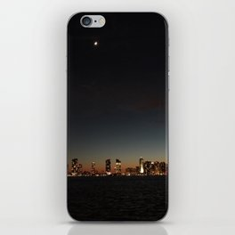 Hudson River View iPhone Skin