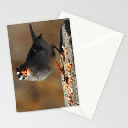 Male White Crowned Sparrow Stationery Cards
