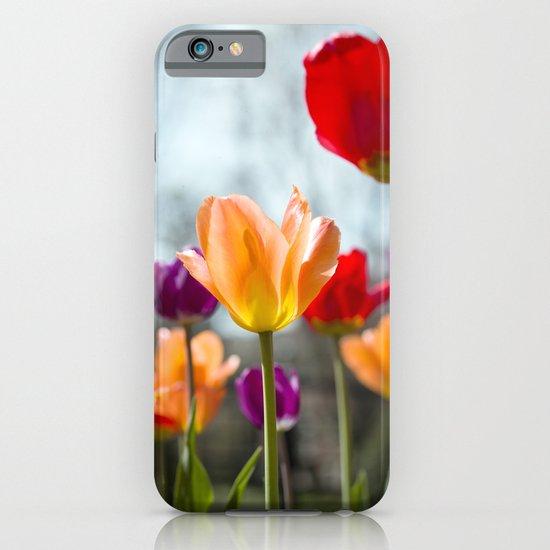 Tulip Dance iPhone & iPod Case