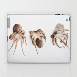 Squid Laptop & iPad Skin