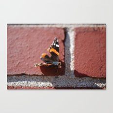Butterfly :: Brick in the Wall Canvas Print