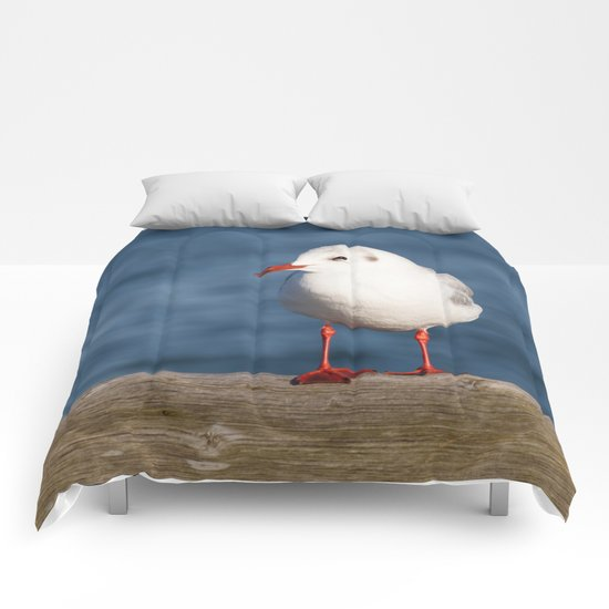 Sea-gull Comforters