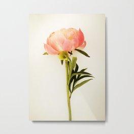 single simplicty Metal Print