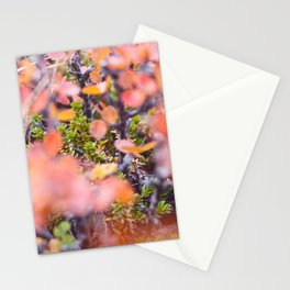 Colorful twigs Stationery Cards