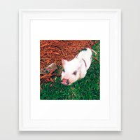piglet Framed Art Prints featuring Piglet {Instagram} by JJBegonia