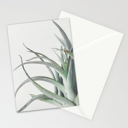 Air Plant II Stationery Cards