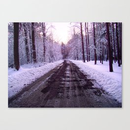 Cold Road Canvas Print