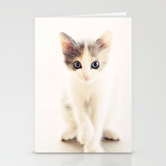 White and Grey Kitten Stationery Cards