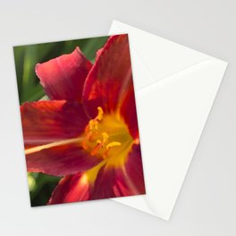Brilliance Stationery Cards