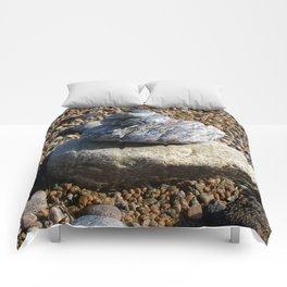 Soldier's Bay Comforters