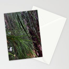 Sparkling Woods 8 Stationery Cards