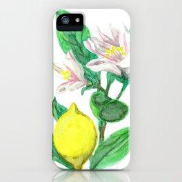 Watercolor Lemon Tree iPhone Case
