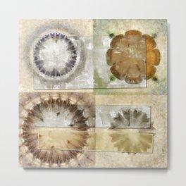 Coated Beauty Flower  ID:16165-092128-56061 Metal Print
