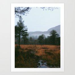 Foggy norwegian forest Art Print