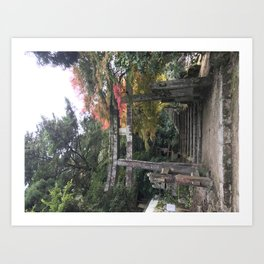 Fushigi Art Print
