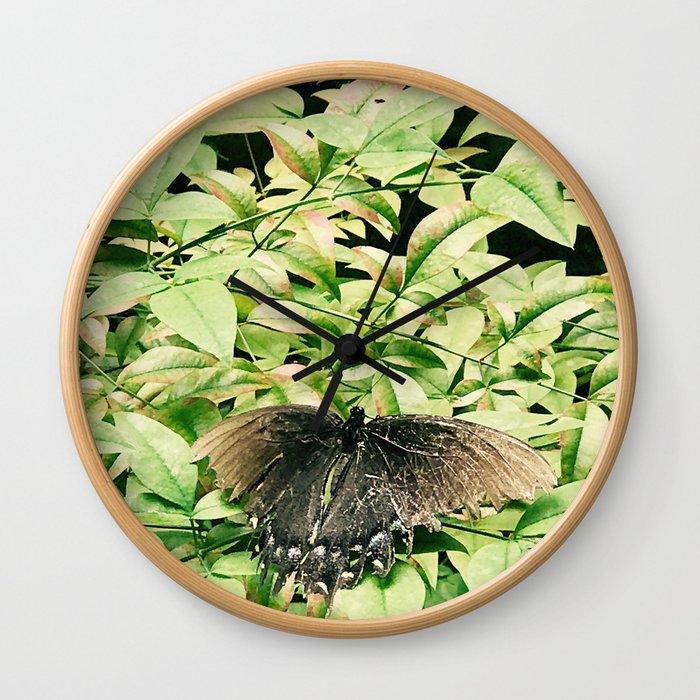 Moth Buddy Wall Clock