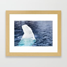 Kissed by the Sun Framed Art Print