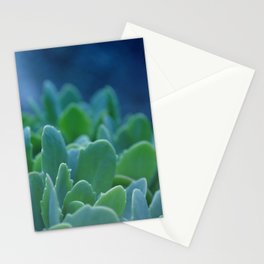 Succulents Life Stationery Cards