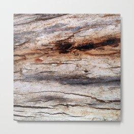 Shiver Me Timbers - 3 Metal Print